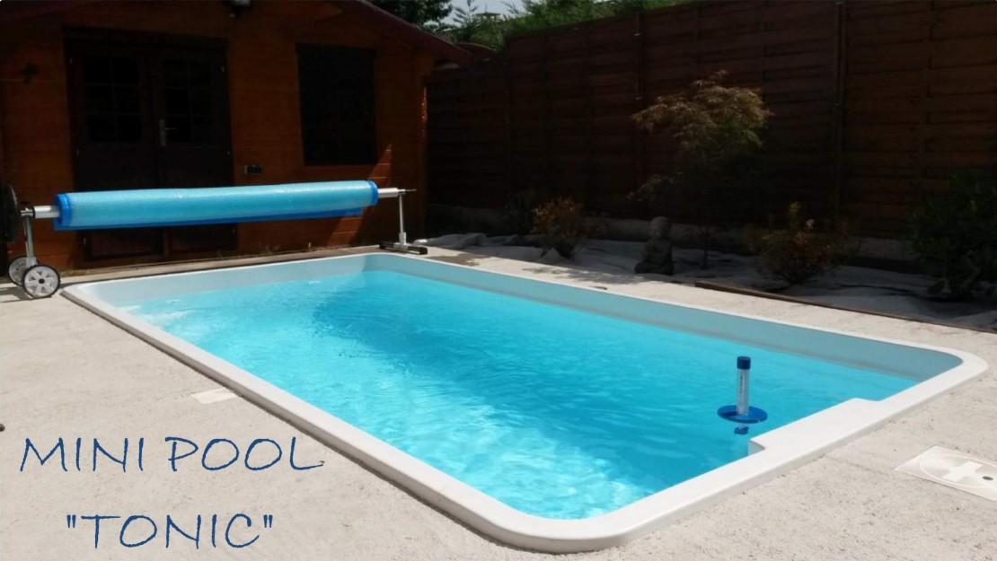 mini pool loic piscines et spas. Black Bedroom Furniture Sets. Home Design Ideas